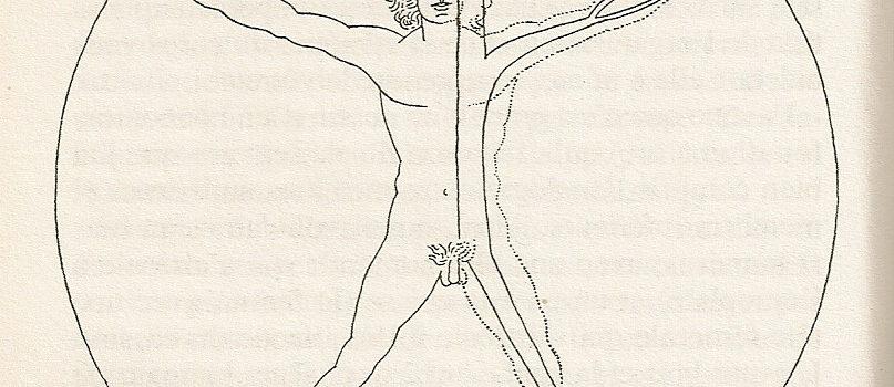 aumvegetalis